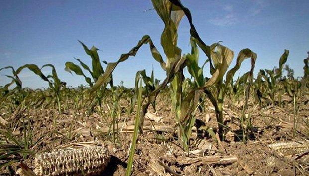 México: Aumentará 1 grado el calor en el país; registran sequía extrema 8 entidades (12 super channel)