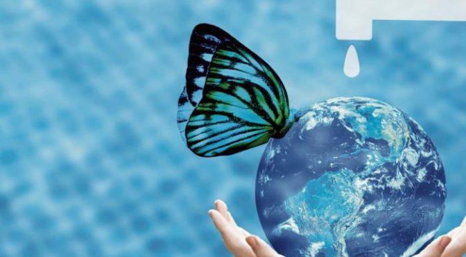 ¿Qué son los Fondos de Agua y cómo ayudan a conservar el recurso? (Portafolio)