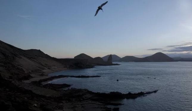 CDMX: Cambios en el océano casi mataron la vida basada en oxígeno (El Universal)