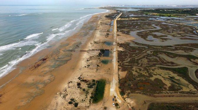 España: La mitad de las playas de arena del planeta, amenazadas por el cambio climático (El País)