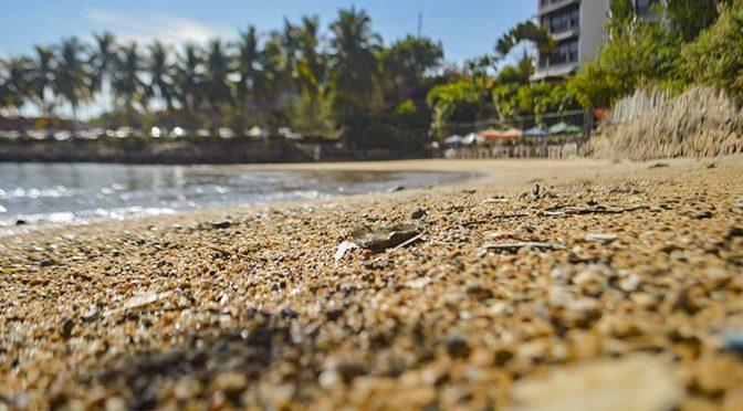 Intensifican labores de limpieza en playa Manzanillo (El Sol de Chilpancingo)