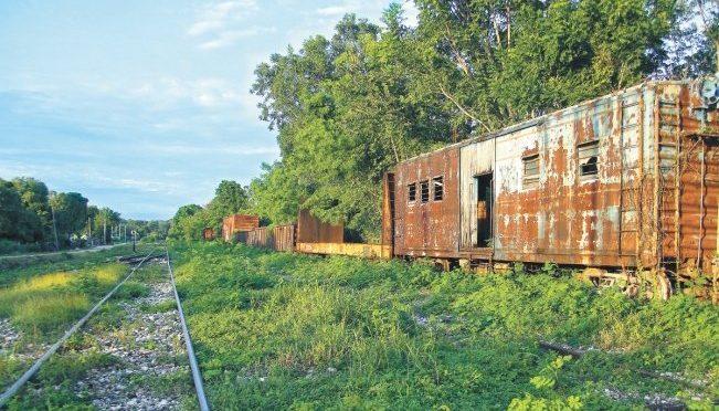 CONACYT ocultó informe crítico con el Tren Maya; ven riesgo (El Universal)