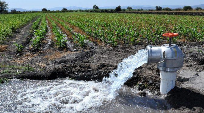 Sinaloa: a su máxima capacidad demanda de agua para riego de cultivos (Linea Directa)