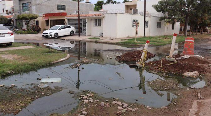 Sinaloa: 'Agua sucia y apestosa está dentro de nuestras casas': Vecinos de la Deportiva (Línea Directa)