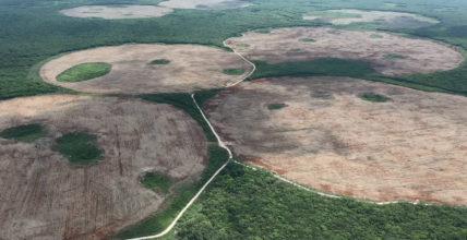 Yucatán: un cacique del agua en el paraíso maya (Aristegui Noticias)