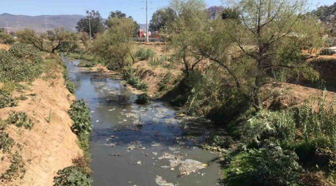 Oaxaca: descarga SAPAO aguas negras en el río Atoyac (NVI Noticias)