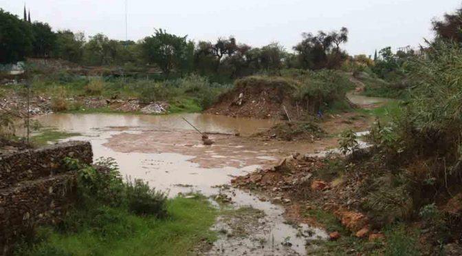 Oaxaca: urgen desazolvar presa Rompepicos (NVI Noticias)