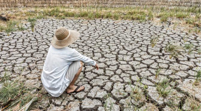 Día Mundial del Agua, una jornada para reflexionar sobre el futuro de este recurso (El Ágora)