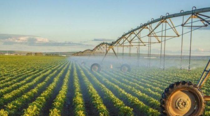 Chile: Impulsan uso eficiente del agua en el riego agrícola en zonas afectadas por sequía (Foro del Agua)