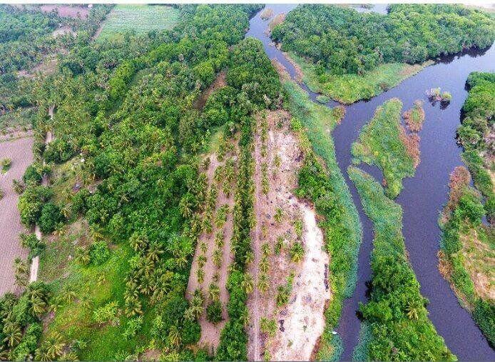 Aproximación holística en el manejo integrado de las cuencas, para la conservación y recuperación de cuerpos de agua superficiales: caso de estudio