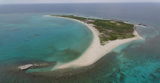 Tarjeta de Reporte Arrecifes Coralinos Golfo de México (bdmy)