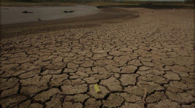 Veracruz: Se extenderá estiaje hasta por tres meses (El Mundo)