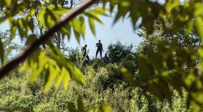 Defensa del ambiente, actividad letal en México (La Jornada)