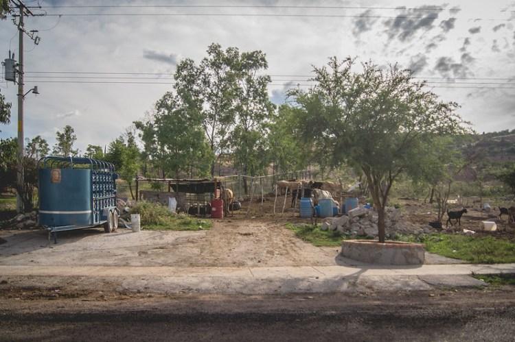 México: Conagua emite recomendaciones para manejo del agua en comunidades rurales (La Jornada Aguascalientes)