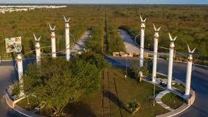 México: Activistas piden a la CIDH medidas para proteger cenotes por Tren Maya (La Jornada)