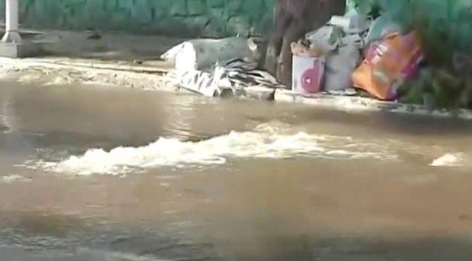 CDMX: Fuga de agua en Iztacalco provoca hundimiento del pavimento (López Dóriga)