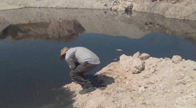 Guanajuato: Acusan a minera de contaminar pozos (La Jornada)
