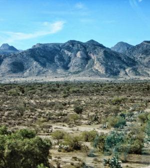 México: Llaman a la Federación a no recortar presupuesto a la Comisión Nacional de Áreas Naturales Protegidas (El Heraldo de SLP)