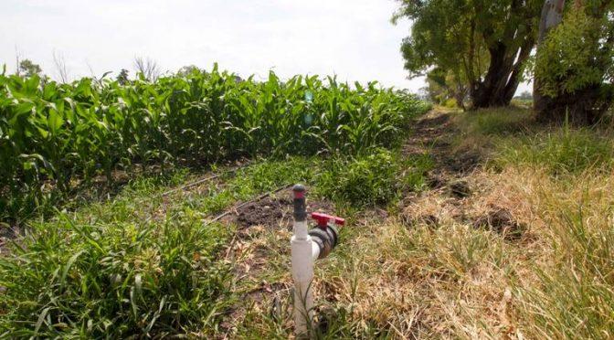 Querétaro: Disminuye extracción de agua en pozos (El Sol de San Juan del Río)