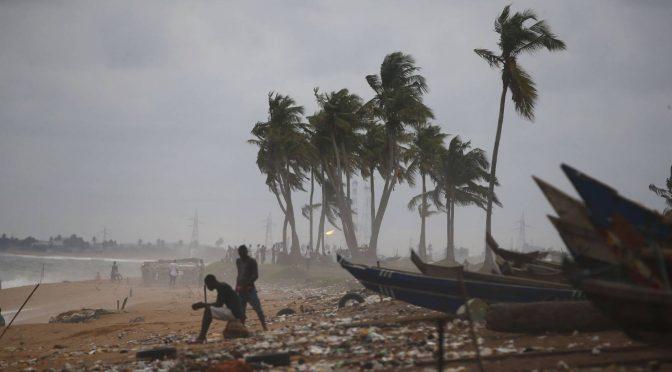 Así afecta la acidificación de los océanos a la muerte de bebés (El País)