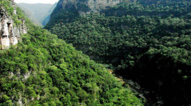 México celebra el Día Mundial del Medio Ambiente y 20 aniversario de la CONANP con el 75% de reducción al presupuesto operativo al sector ambiental