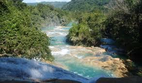México: Se requieren más recursos para áreas naturales (La Jornada)
