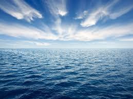 Día Mundial de los Océanos 2020: Nuestros mares son increíbles, pero necesitan ayuda (CNN)