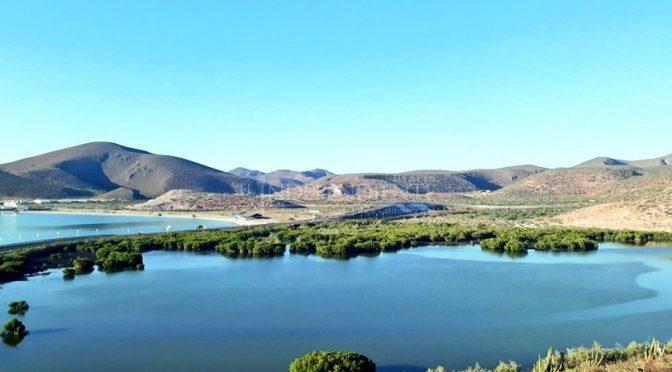 Baja California Sur: Evalúa CONANP daño a los sitios Ramsar por explosiones en Pichilingue (El Diario Independiente)