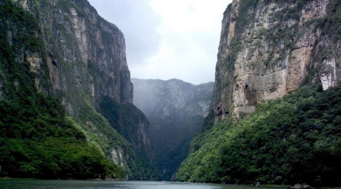 Mensajes del Día Mundial del Medio Ambiente en México