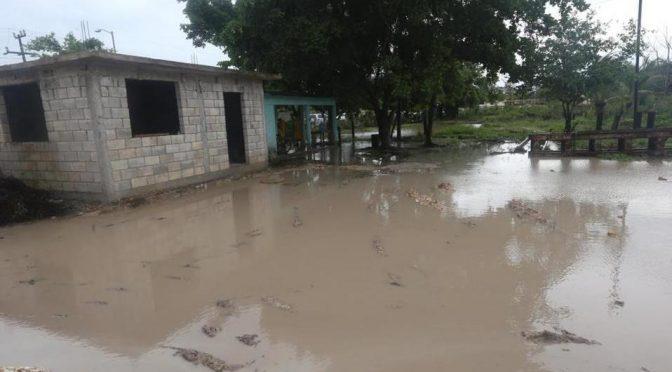 Campeche: Prevén que tormenta 'Cristóbal' ingrese hoy al mar del Golfo de México (Milenio)
