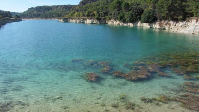 España: El agua: caudal de vida, motor económico, soporte de ecosistemas naturales y eje vertebrador de Castilla-La Mancha (Agrodiario)