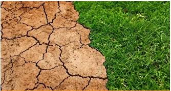 EUA: Cómo una empresa de EEUU planea producir agua potable en medio del desierto. (Sputniknews)