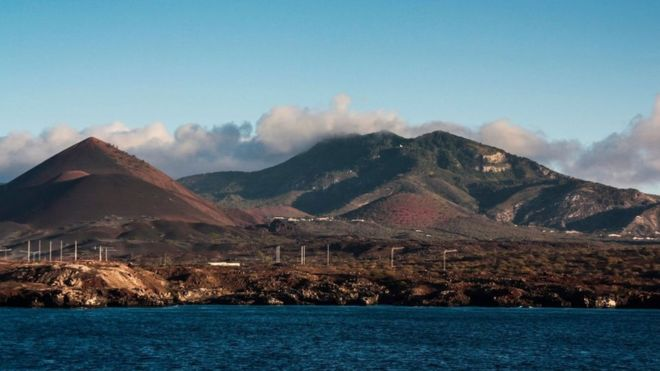 Ascensión: la remota isla entre África y Brasil que contiene lecciones para el futuro del medio ambiente  (BBC)