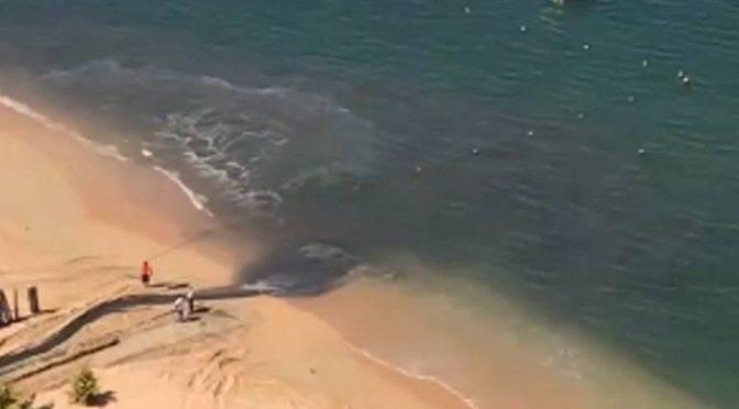 Guerrero: Plaza comercial formó parte de las descargas de aguas negras en playa Icacos: Ecología (El Sol de Acapulco)