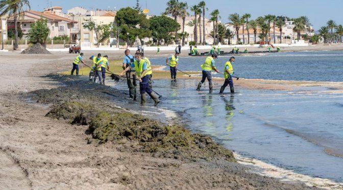 España: La degradación del mar Menor se cronifica: tardará décadas en recuperarse (El País)