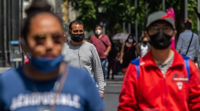 Presentan proyecto pospandemia para la recuperación económica y ambiental de América Latina (Animal Político)