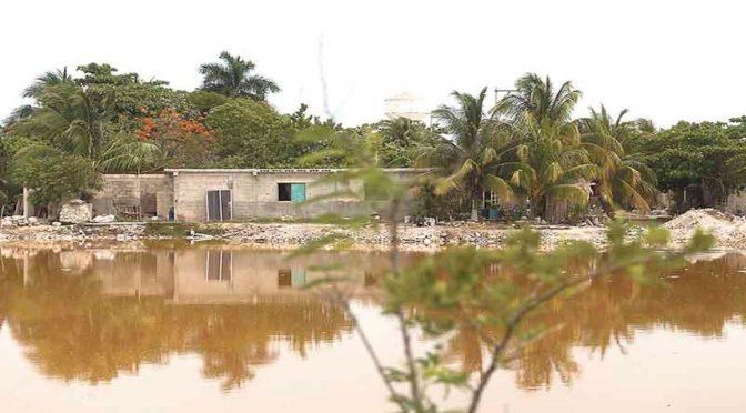 descartan presencia natural de metales pesados en la Península de Yucatán (Por Esto)