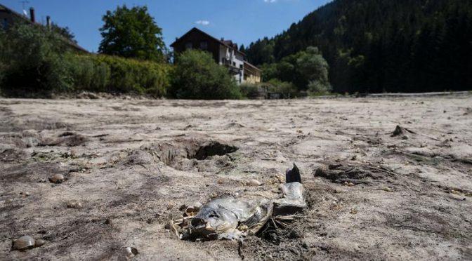 Francia experimenta el julio más seco de los últimos 60 años (Euro News)