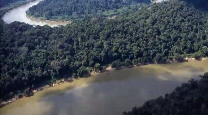 Devastación en el Usumacinta: ocupación ilegal, contrabando de ganado, madera y armas son las principales amenazas (InfoBae)