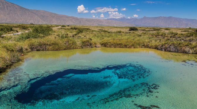 Especies únicas, en riesgo por escasez de agua en Coahuila (La Jornada)