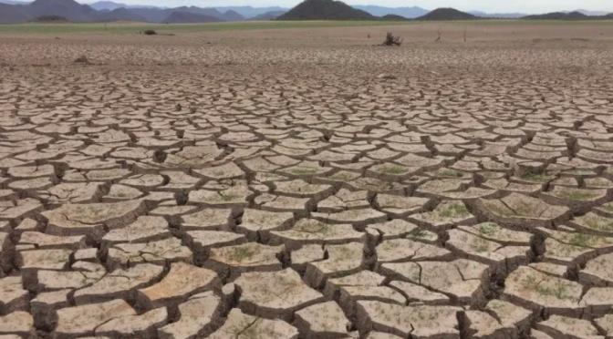 Agua en Sonora: Viven sequía más crítica en más de medio siglo en regiones del Mayo y Yaqui (El Imparcial)