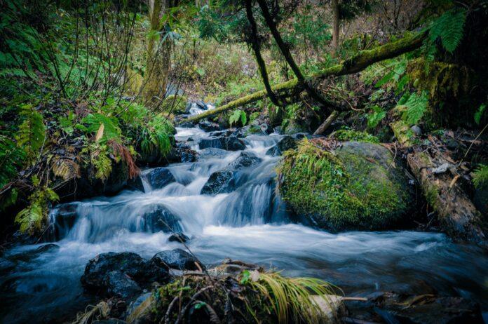 Microsoft proveerá más agua de la que consume para 2030 (Ambientum)
