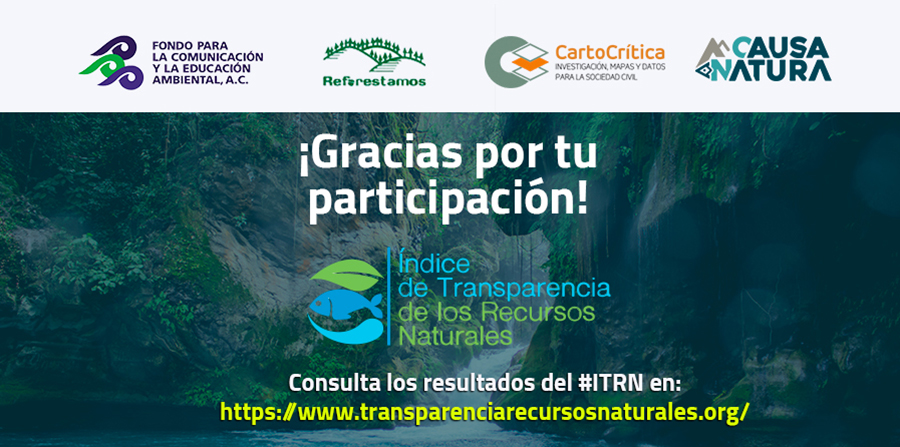 Señalan opacidad en gestión gubernamental de bosques, aguas y pesca (Teorema ambiental)