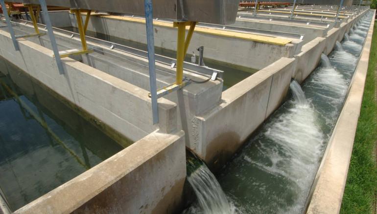 Estos son los 10 municipios que no tendrán agua por trabajos en Las Pavas (Diario1)