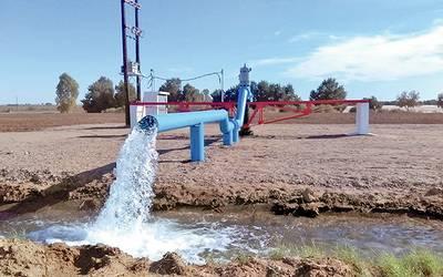 Mercado de agua (El Imparcial)