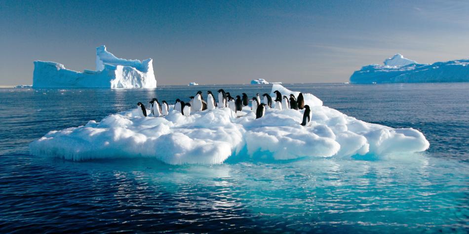 Científicos hallan microplásticos en el agua dulce de la Antártida (El Tiempo)