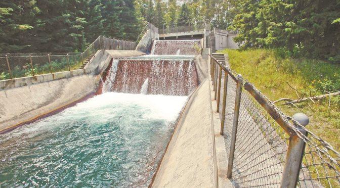 Reportan bajos niveles de agua en el Cutzamala