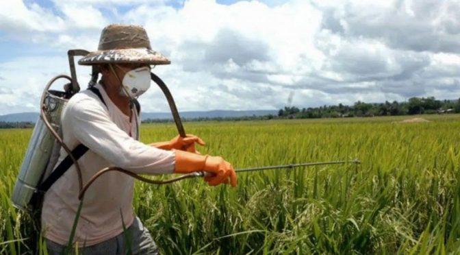 (Argentina) El Gobierno convoca a científicos por el uso de agrotóxicos (Infonews)