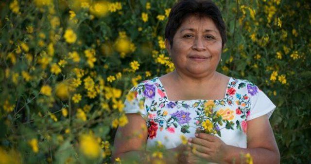 Leydy Pech, indígena maya que le puso un hasta aquí a Monsanto, gana premio ambiental global (Sin embargo)