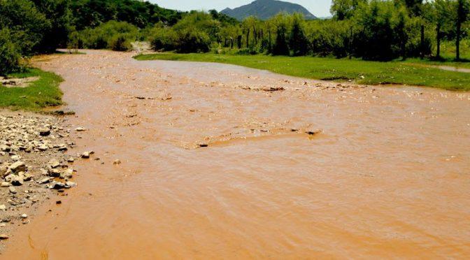 """Sonora: """"Nos están dejando morir envenenados"""": pobladores advirtieron sobre contaminación del Río Sonora por arsénico y plomo. (Infobae)"""